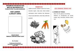 leafleat_gizi_lansia2.pdf