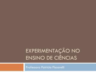 Experimentação no Ensino de Ciências_apresentação.pdf