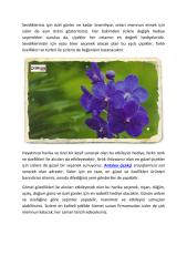 Antalya çiçekçi.pdf