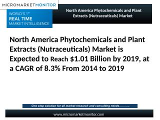 North America Phytochemicals and Plant Extracts (Nutraceuticals) Market.pptx